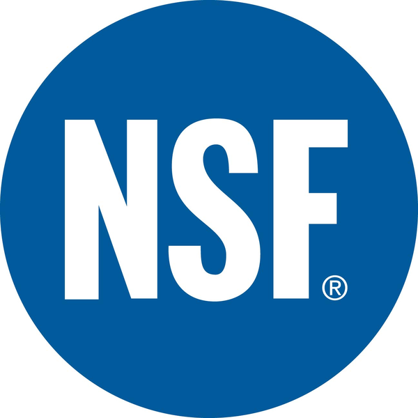 nsf globalg.a.p course